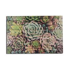 Succulent Garden 24x36 Print on Wood