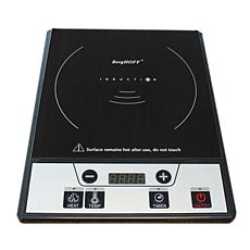 Tronic Power Induction Range