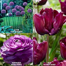 VanZyverden Color Your Garden Purple Collection 27-piece Bulb Set