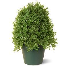 Winter Lane 1-1/4' Artificial Topiary Boxwood Tree