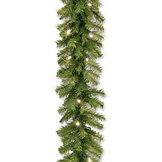 "Winter Lane 24"" Norwood Fir Garland w/White LEDs"