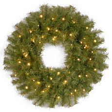"Winter Lane 24""Battery-Operated Norwood Wreath w/LEDs"