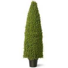 Winter Lane 5' Artificial Topiary Boxwood Tree