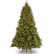 """Winter Lane 7-1/2' Douglas """"Feel-Real"""" Tree w/Lights"""