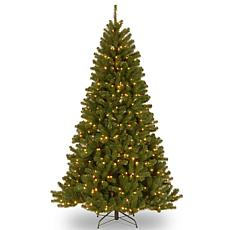 Winter Lane 7-1/2' N. Valley Spruce Hinged Tree w/LED Lights