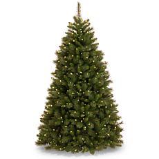 Winter Lane 7-1/2' Rocky Ridge Pine Tree w/Lights