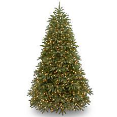 Winter Lane 7-1/2'Jersey Fraser Tree (1000 Lights)