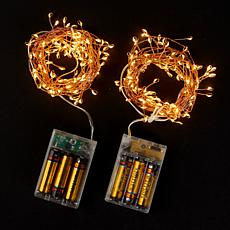 Winter Lane Set of 2 Strings of Mini LED Lights