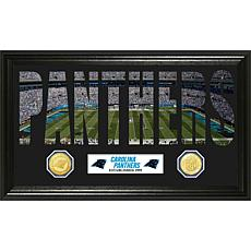 Word Art Minted Coin Panoramic Photo-Carolina Panthers