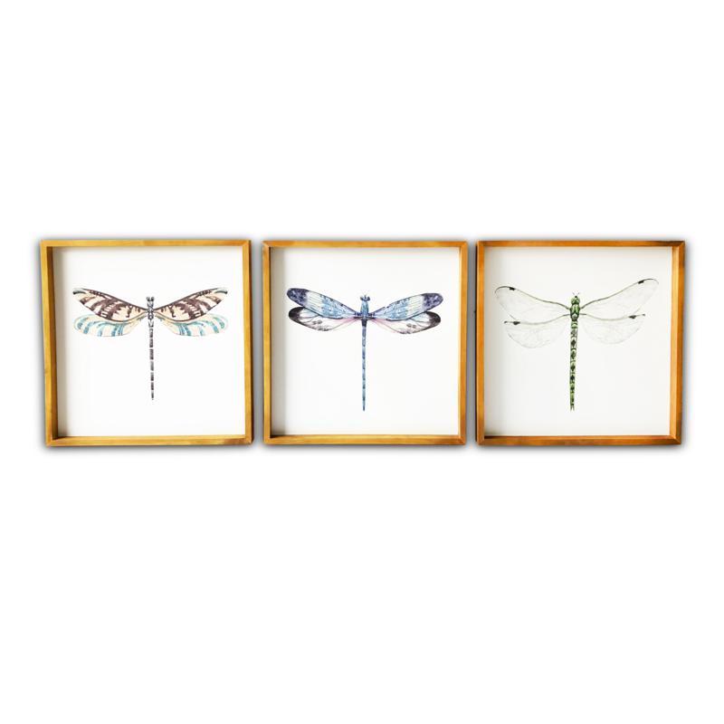 Gallery 57 Set of 3 Dragonflies Wood Framed Art