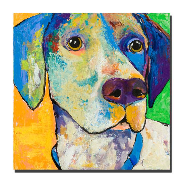 "Giclee Print - Yancy by Colorful Attitudes 24"" x 24"""