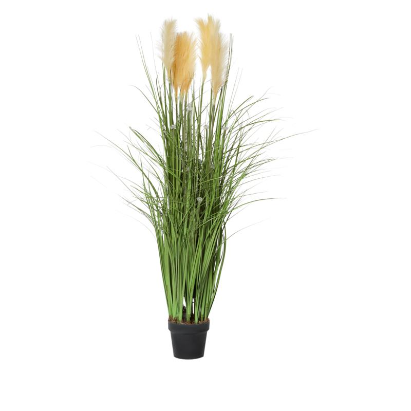 Indoor/Outdoor LED-Illuminated Faux Pampas Grass with Timer