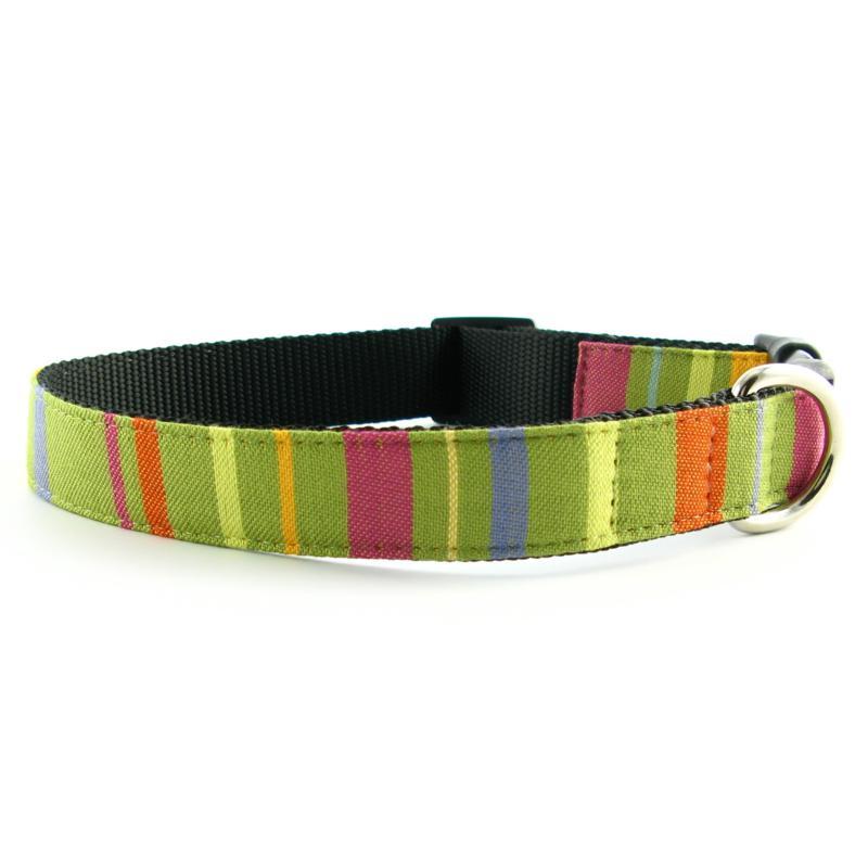 Isabella Cane Abbington Dog Collar - Lime XS