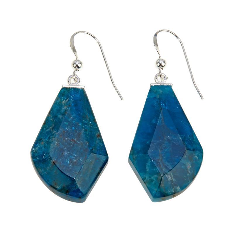 Jay King Freeform Blue Apatite Drop Earrings