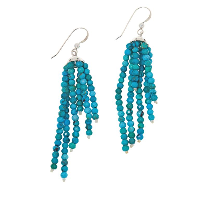 Jay King Sterling Silver Azure Peaks Turquoise Beaded Tassel Earrings