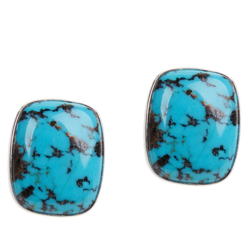 Jay King Sterling Silver Cushion-Cut Windy Mountain Turquoise Earrings
