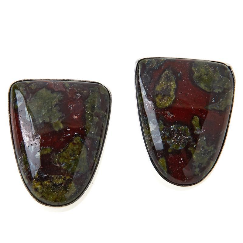 Jay King Sterling Silver Dragon Blood Stone Earrings