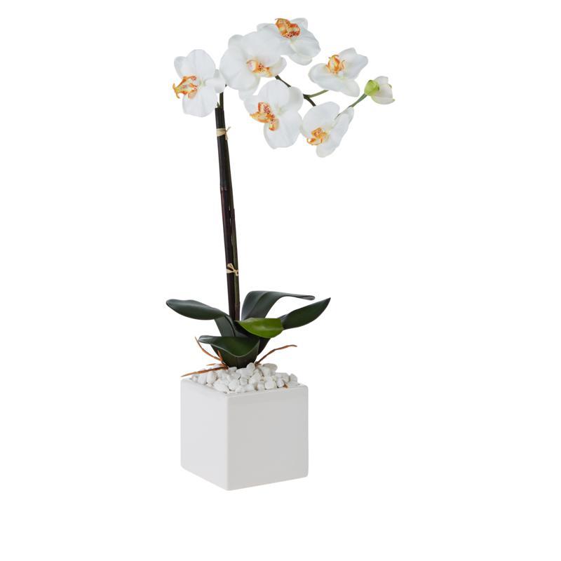 """JM by Julien Macdonald 22.5"""" Single Stem Orchid"""