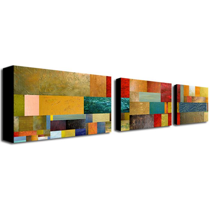 Michelle Calkins'Project V' Multi-Panel Art Collection